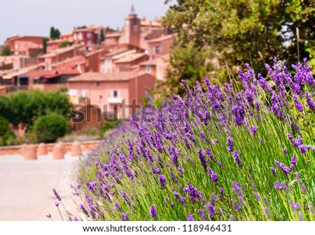 Lavender flowers in a provence town Rousillon