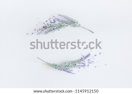 Lavender flowers on pastel gray background. Flat lay, top view, square #1145912150