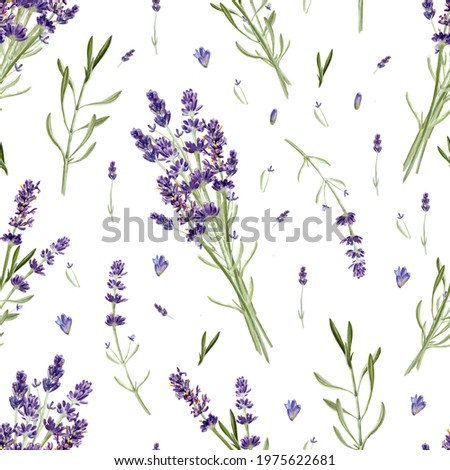 Lavender flowers seamless pattern isolated on white background. Watercolor hand drawing  botanical illustration. For card, wallpaper, packaging, invitation Foto stock ©