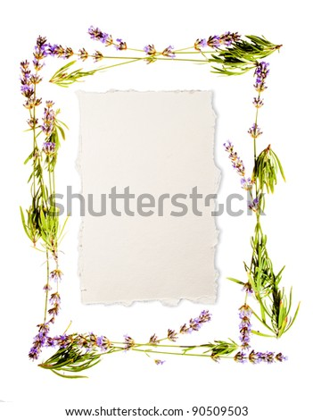 Lavender frame isolated on white. Sheet of aged watercolor paper in the centre for a message. If you don't need the sheet you will find it easy to remove as it sits on a perfectly white background.