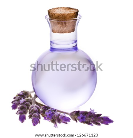 Lavender herb flower water in a glass bottle with flowers , isolated on white background.
