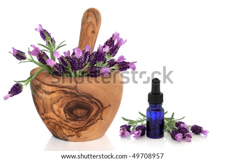 Lavender herb flowers in an olive wood mortar with pestle with an aromatherapy essential oil glass dropper bottle, over white background with reflection.