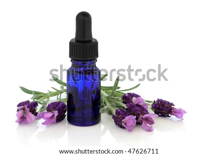 Lavender herb flowers with aromatherapy essential oil glass dropper bottle , isolated over white background with reflection.
