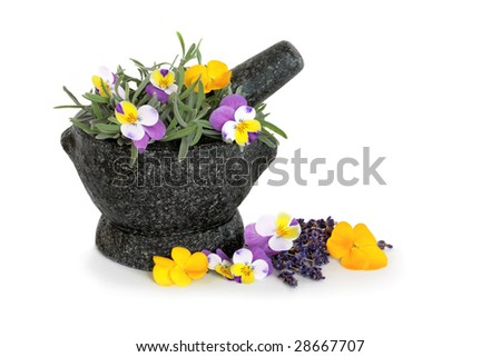 Lavender herb leaf sprigs  and viola flowers in a hand carved granite mortar with pestle, over white background. Beneficial for skincare.