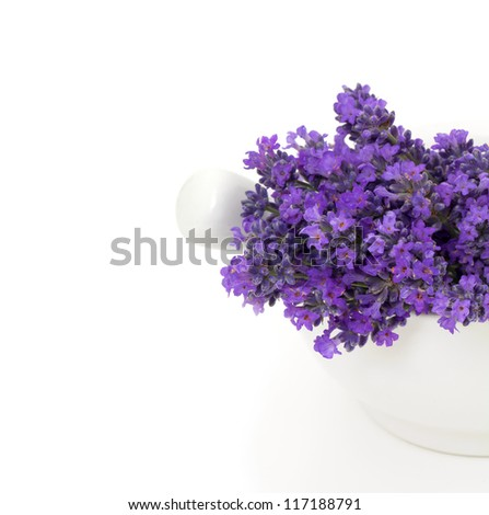 lavender in a mortar and empty space for your text