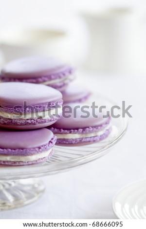 Lavender macarons - stock photo