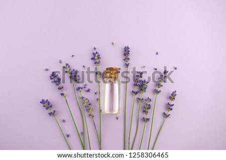 Lavender oil and lavender flowers with seeds on a light pastel lilac background.Pure Essential Organic Lavender Oil   #1258306465