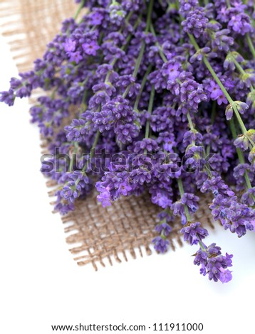 lavender on burlap - stock photo