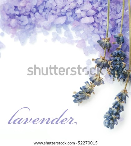 Lavender Spa border.Isolated on white