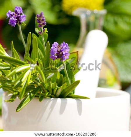 lavender with mortar and pestle - stock photo