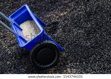 Lawn care Lawn seeds as a background #1543746101