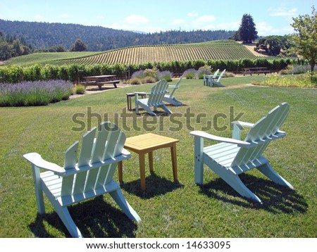 Lawn Chairs Create an Inviting Environment at a Vineyard in Northern California's Wine Country