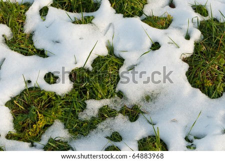 lawn in autumn with snow patches