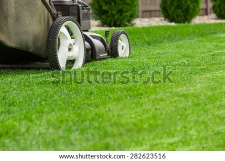 Lawn mower #282623516
