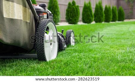 Lawn mower #282623519