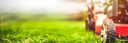 Lawn mower cut grass. Garden work. Electric Rotary lawn mower machine