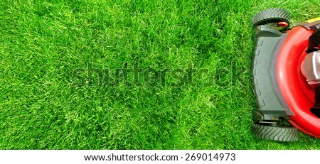 Lawn mower cutting green grass in backyard.Gardening background. #269014973