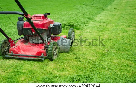 Lawn mower cutting green grass in backyard.Gardening background. #439479844