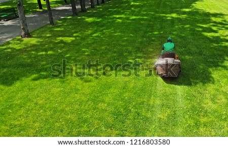 Lawn mower. Gardener cuts grass in a park lawn with a grass cutter.  #1216803580