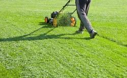 Lawn mower mower, grass, equipment, mowing, gardener, care, work, tool,