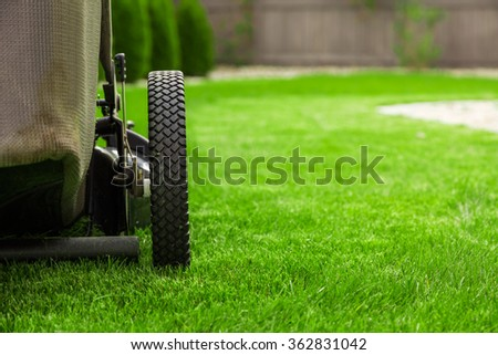 Lawn mower on green grass #362831042