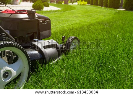 Lawn mower on green grass  #613453034