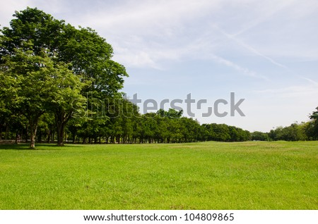 Lawn on a golf field  in Bangkok, Thailand