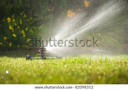 Lawn sprinkler spraying water over green grass at summer