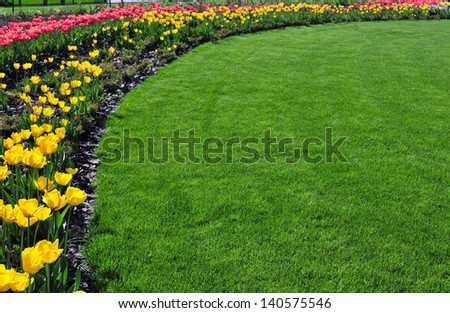 lawn with flowers