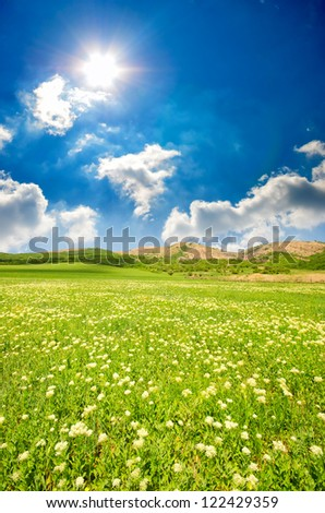 lawn with green grass, lush mountains in the background