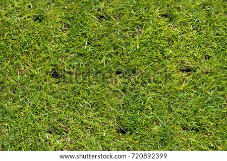 lawn with holes on a football field after aerating #720892399