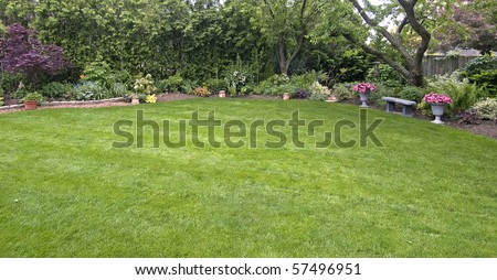 lawn with tree edge