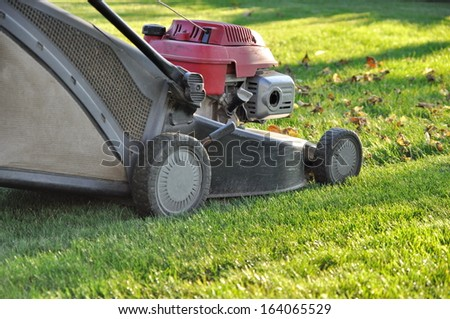 Lawnmower at autumn #164065529