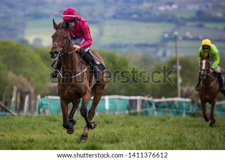 Lead race horse and jockey galloping on the track #1411376612