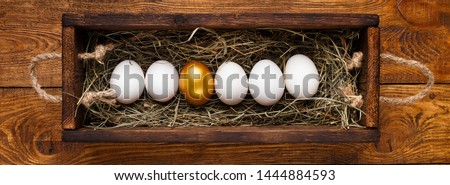 Leadership and power of individuality. One golden egg among row of white in wooden box, panorama