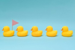 Leadership concept, rubber ducks following the leader