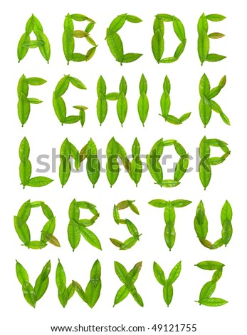 Leaf alphabet. - stock photo