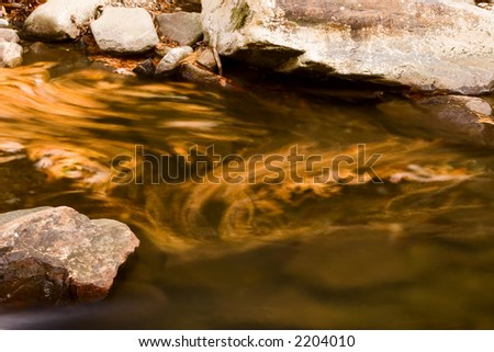 Leaf Flowing in Autumn Stream Roaring Forks Tennessee