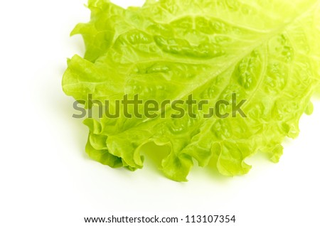 leaf fresh lettuce isolated on a white