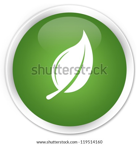 Leaf (nature plant) icon green button