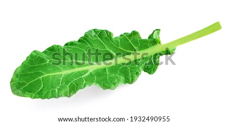 Leaf of Broccoli vegetable isolated on white background. Green leaf Broccolli close-up Foto stock ©