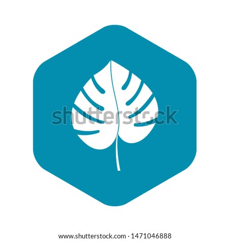 Leaf of monstera icon. Simple illustration of leaf of monstera icon for web