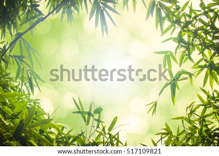 Leaf pattern leaves bamboo or abstract background .Green Energy and world for water day or National Forest Conservation Day.