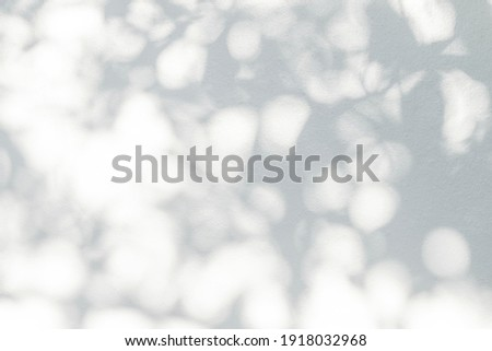 Leaf shadow and light on wall blur background. Nature tropical leaves plant and tree branch shade with sunlight on white wall texture Foto stock ©