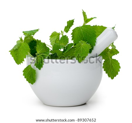Leaf spearmint and mortar