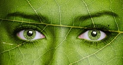 Leaf texture on human face. Ecology concept.