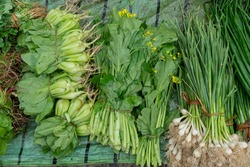 Leaf vegetables, also called leafy greens, salad greens,vegetable greens, or simply greens, are plant leaves eaten as a vegetable, for sale in a market in Territy Bazar, Kolkata, West Bengal, India.