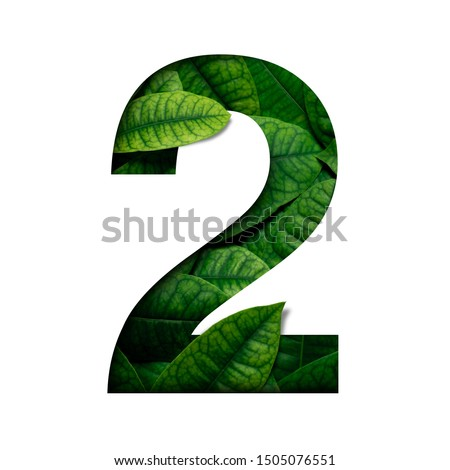 Leafs number 2 made of Real alive leafs with Precious paper cut shape of number. Leafs font.