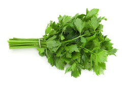 Leafy celery herb isolated on white background