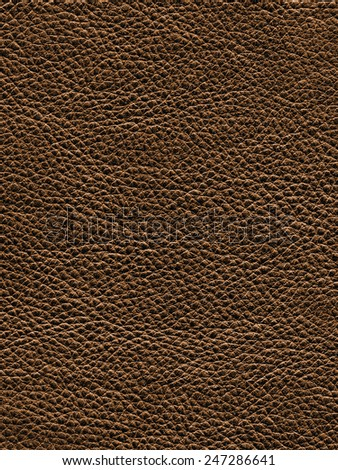 Leather cow hide texture